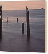 Tranquil Sea Wood Print