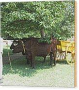 Transportation. Colonial Williamsburg. Virginia Wood Print