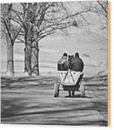 Transportation Wood Print