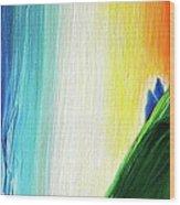 Travelers Rainbow Waterfall Detail Wood Print