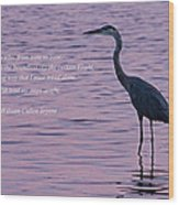 Treading Alone   Great Blue Heron  Wood Print by Jonathan Whichard
