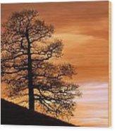Tree Against A Sunset Sky Wood Print