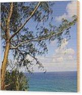 Tree And A Tropical Beach Wood Print