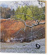 Tree And Tire Swing In Winter Wood Print