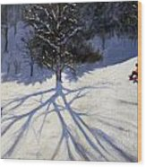 Tree And Two Tobogganers Wood Print by Andrew Macara