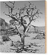 Tree At Cedar Ridge Bw Wood Print