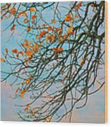 Tree Branches In Autumn Wood Print