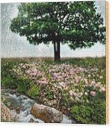 Tree By Stream Wood Print