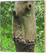 Tree Face Wood Print