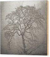 Tree Fog Wood Print