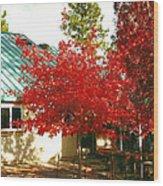 Tree II Wood Print