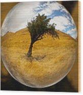 Tree In A Field Through A Glass Eye Wood Print