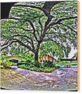 Tree In Church Yard - 4 Wood Print