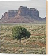 Tree In Monument Valley Wood Print
