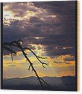 Tree Limb In Sunset Wood Print