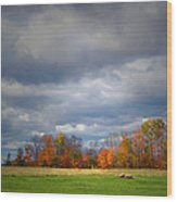 Tree Line On Sunset Hill In New Hampshire Wood Print