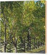 Tree Mix Wood Print