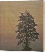 Tree Wood Print by Odd Jeppesen