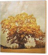 Tree Of Joy Wood Print by Jai Johnson