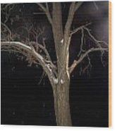 Tree On A Dark Snowy Night Wood Print by Victoria Sheldon