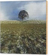 Tree On A Landscape, Giants Ring Wood Print