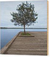 Tree On Jetty Wood Print