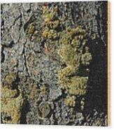 Tree People Wood Print