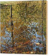 Tree River Reflections Wood Print