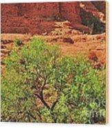 Tree Set Against Red Cliffs Wood Print