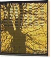 Tree Shadow Wood Print