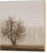Tree Silhouette In Fog Wood Print