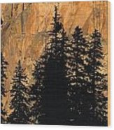 Tree Silhouettes In Front Of Cliff Face Wood Print