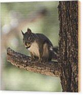 Tree Squirrel Wood Print