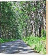 Tree Tunnel Wood Print