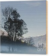 Tree With Fog On Field And Wood Print