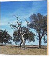 Treegedy Wood Print