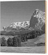 Treeline Across Alpi Di Siusi In The Dolomites Wood Print
