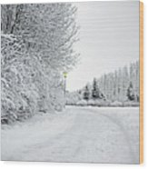 Trees And Dirt Path In Snowy Landscape Wood Print