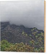 Trees And Leaves At The Base Of A Mountain With Clouds And Mist Covering The Top Wood Print