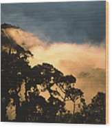 Trees And Mountaintops Above The Clouds Wood Print