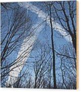 Trees And Trails Wood Print