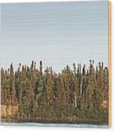 Trees Covering An Island On Lake Wood Print by Susan Dykstra