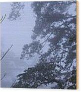 Trees In Fog 3  Wood Print