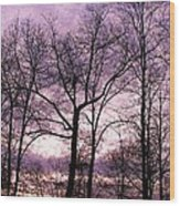 Trees In Glorious Calm Wood Print
