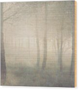 Trees In Mist On Linen Wood Print by Paul Grand Image