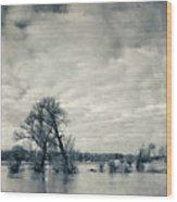 Trees In River Rhine Wood Print