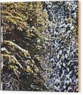 Trees In Taos Village Wood Print