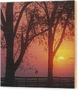 Trees In The Sunrise Wood Print