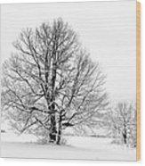 Trees In Winter Wood Print