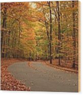 Trees Of Autumn - Holmdel Park Wood Print by Angie Tirado